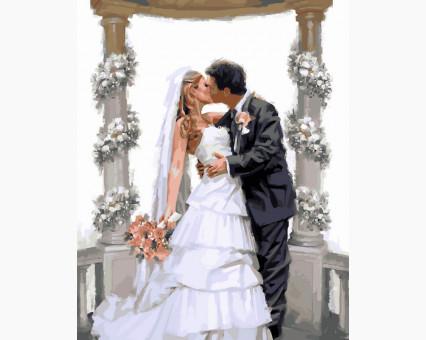 VP452 картина по номерам Свадебная арка DIY Babylon