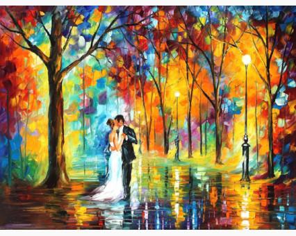 VP457 картина по номерам Дождливая свадьба DIY Babylon фото набора