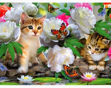 VP463 картина по номерам Милые котики DIY Babylon фото набора