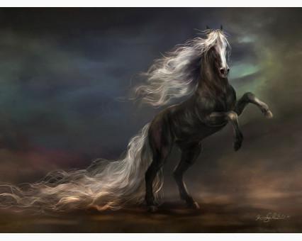 VP471 картина по номерам Чудный конь  DIY Babylon фото набора