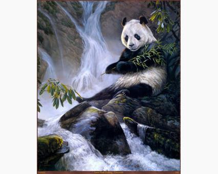 VP475 картина по номерам Панда с бамбуком DIY Babylon фото набора