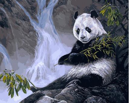 VP475 картина по номерам Панда с бамбуком DIY Babylon