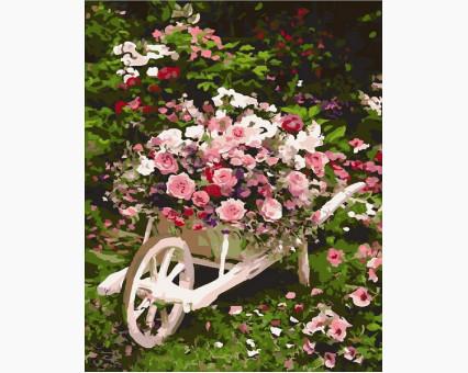 MR-Q2086 Картина раскраска Розовый кустMariposa