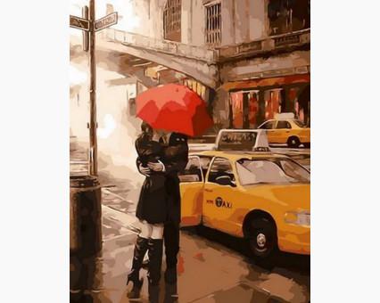 MR-Q866 Картина раскраска Под зонтом счастья Mariposa