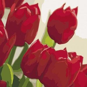 картина Идейка тюльпаны