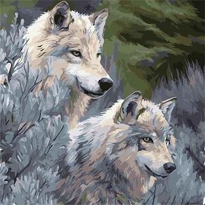 легкая картина по номерам волки