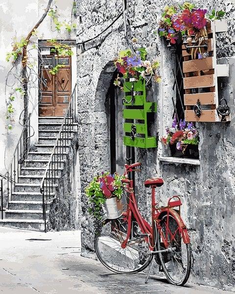 Mariposa - картина по номерам цветы и велосипед