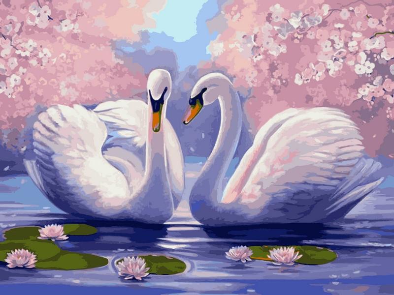 Картина по номерам лебеди