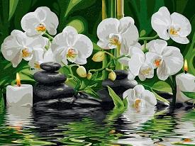 Картина по номерам цветы